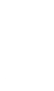 logo png white2.png