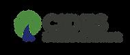 CIDES_logo_CT.png