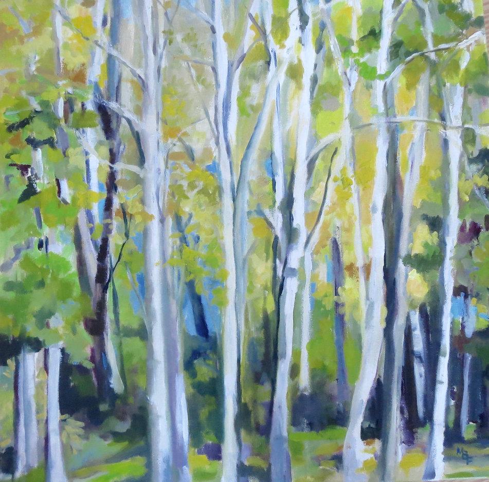 Birches by Marcia Brandwein