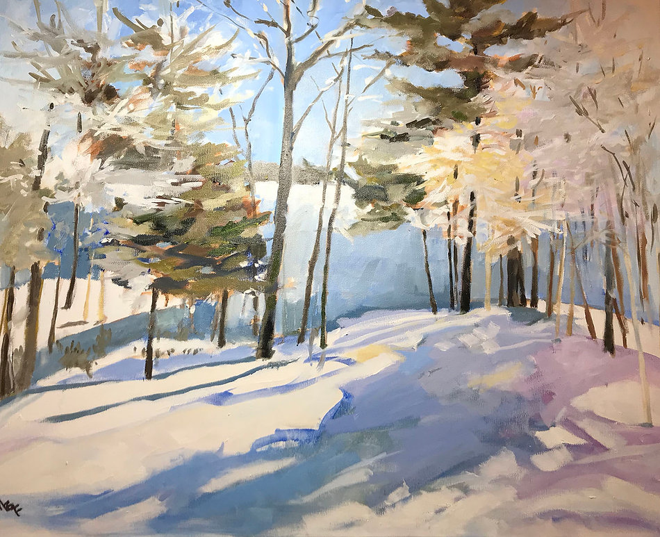 First Snowfall by Marcia Brandwein