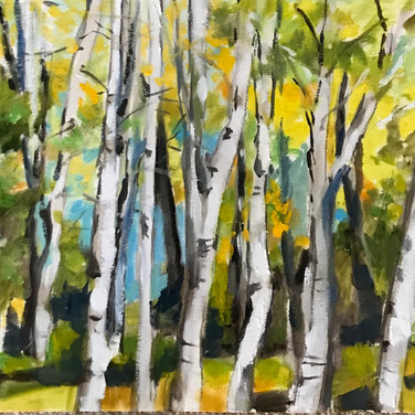 Yellow Leaves And Birches