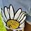 Thumbnail: Blooming Daisy set