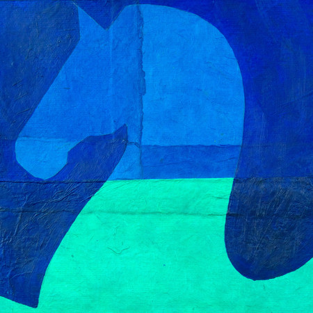 the refusing horse in blue