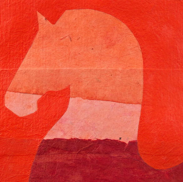 the refusing horse in orange