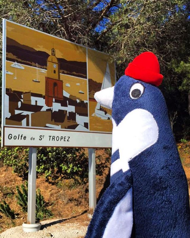 Who's coming with me_ ⛵️🇫🇷🐧 #Santropa #SantropaPenguin #StTropez