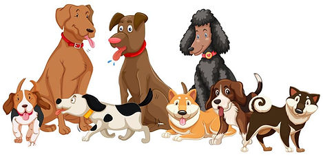 set-of-various-dogs-vector.jpg