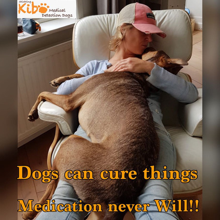Dogs can cure things medication never will!