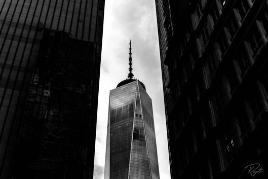 NYC Web-172.jpg