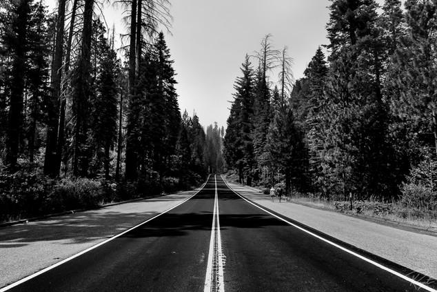 Yosem wm-0026.jpg