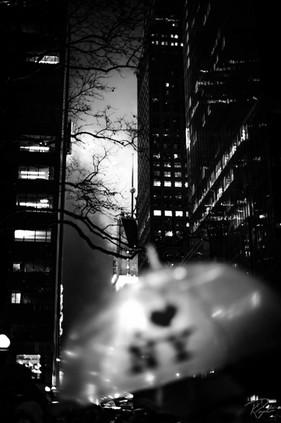 NYC Web-132.jpg