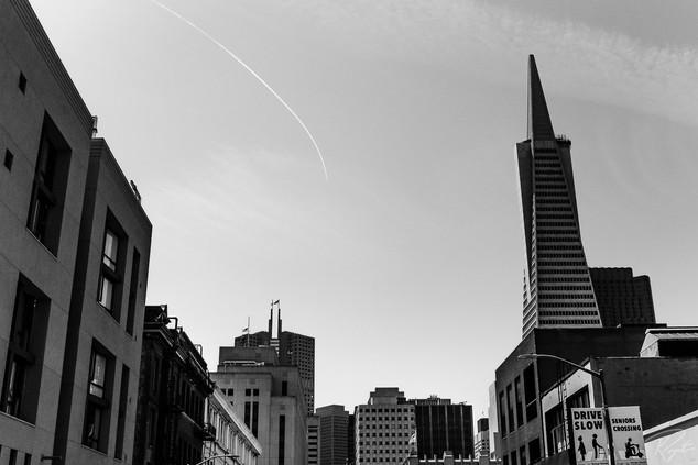 SF web-0101.jpg