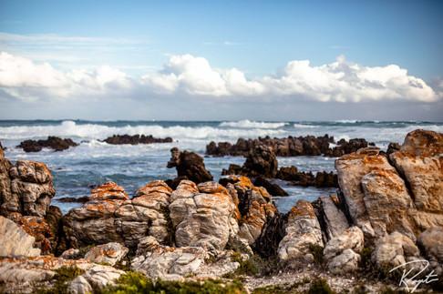 Cape Agulhas wm-40.jpg