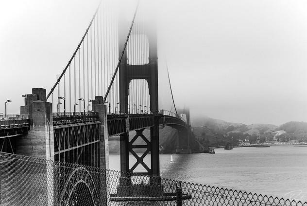 SF web-0115.jpg