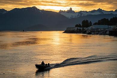 wildiris petersburg boat morning sunrise