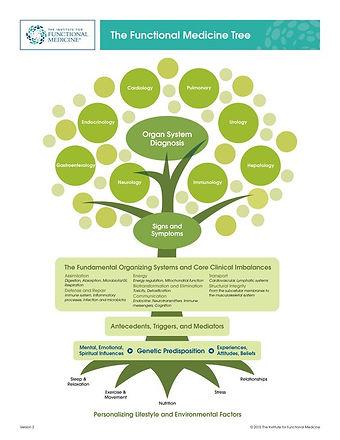 IFM FM Tree.jpg