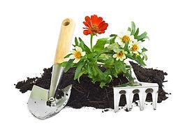 petits-travaux-jardinage.jpg