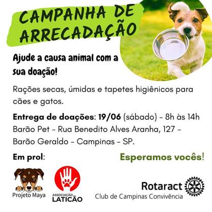 Rotaract Club de Campinas Convivência promove arrecadação e sessão de fotos em prol da causa animal
