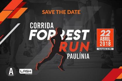 Paulínia recebe corrida inspirada no filme Forrest Gump: O contador de História