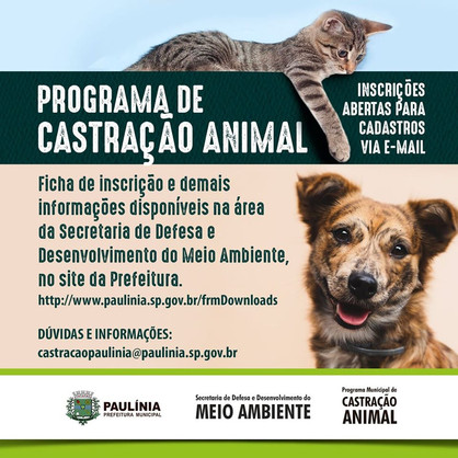 Inscrições abertas para Programa Municipal de Castração e Microchipagem Animal