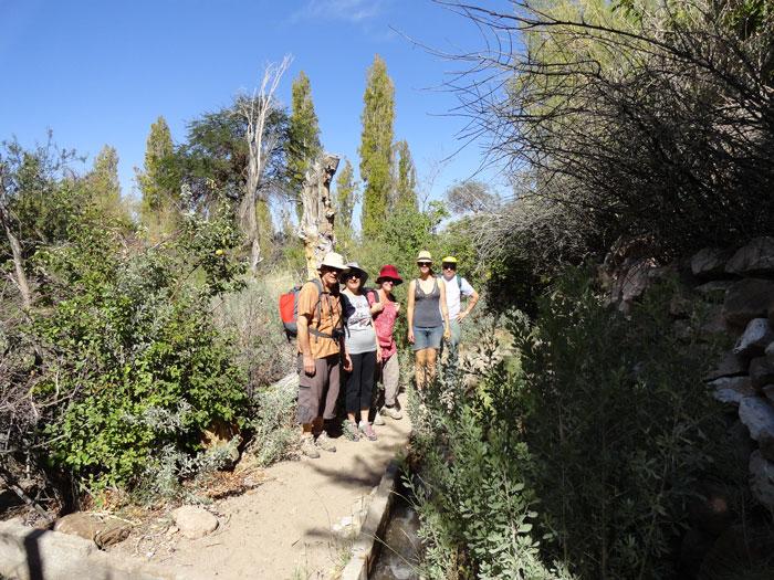 Garden of Toconao