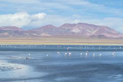 Lac de Tara