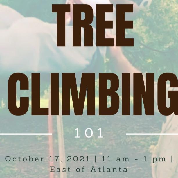 Tree Climbing 101