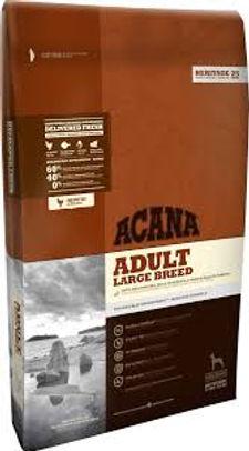 Acana adult large breed dog