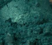 Hunter Green Mica.PNG