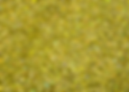 Holographic Gold Glitter.PNG
