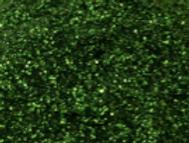 Irish Moss Glitter.PNG