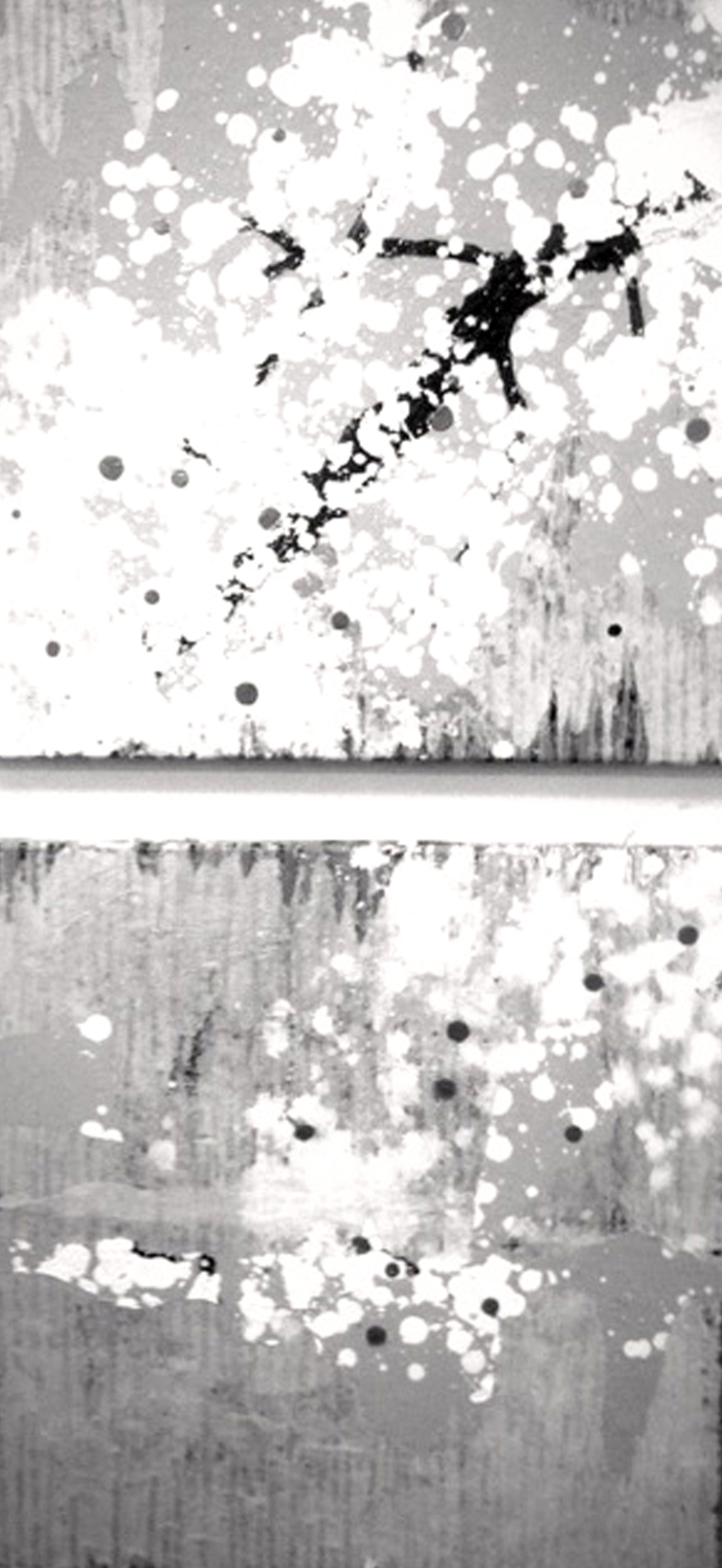 Plum blossom2012gray
