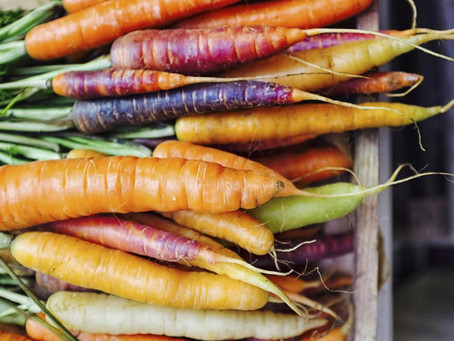 "4 reasons ""carrots"" should be used in soups and salads, and not as motivation tools"