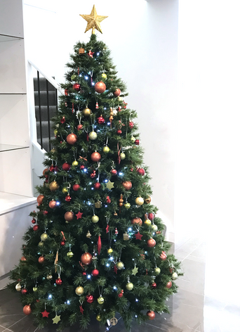 Private client - Christmas tree styling