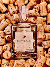 Vineyard in Corks.jpg