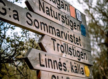Grövelsjön - Silverfallet och Jakobshöjden.