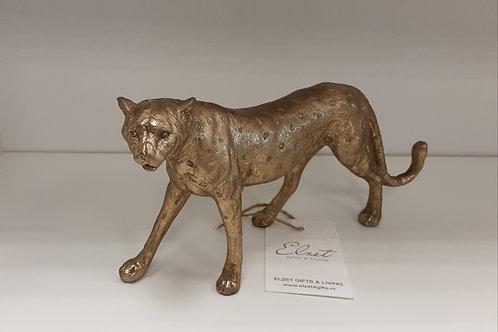 Luipaard goud Elzet