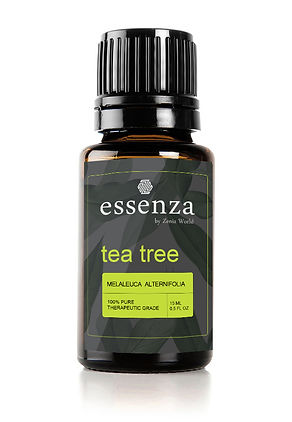 Z-TEA TREE.jpg