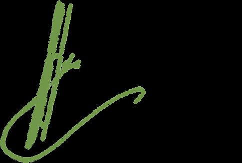 _logo_appuis_coaching-pos.png