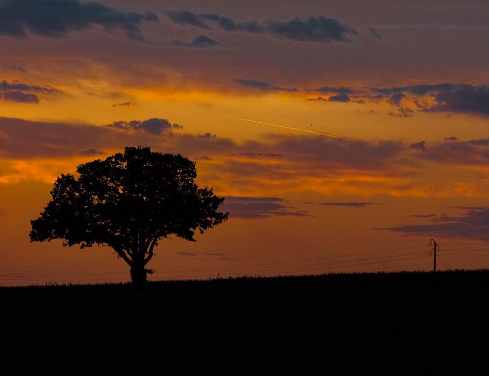 Lever de soleil dans la campagne Sullyloise