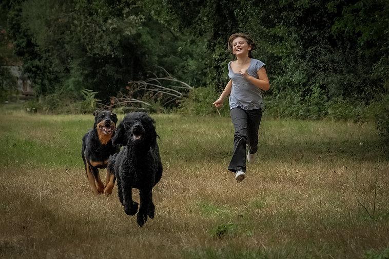 chiens et enfant