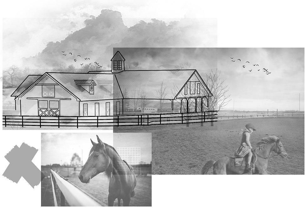 at çiftliği.jpg