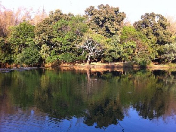 ThalasseryOnline_dharmadam3.jpg