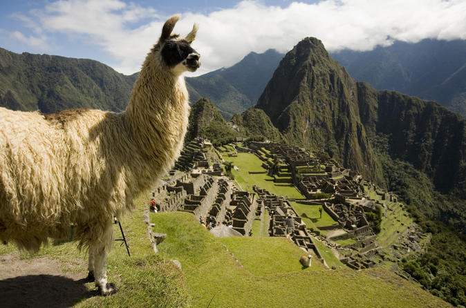 machu-picchu-private-guided-tour-from-aguas-calientes-in-cusco-348338
