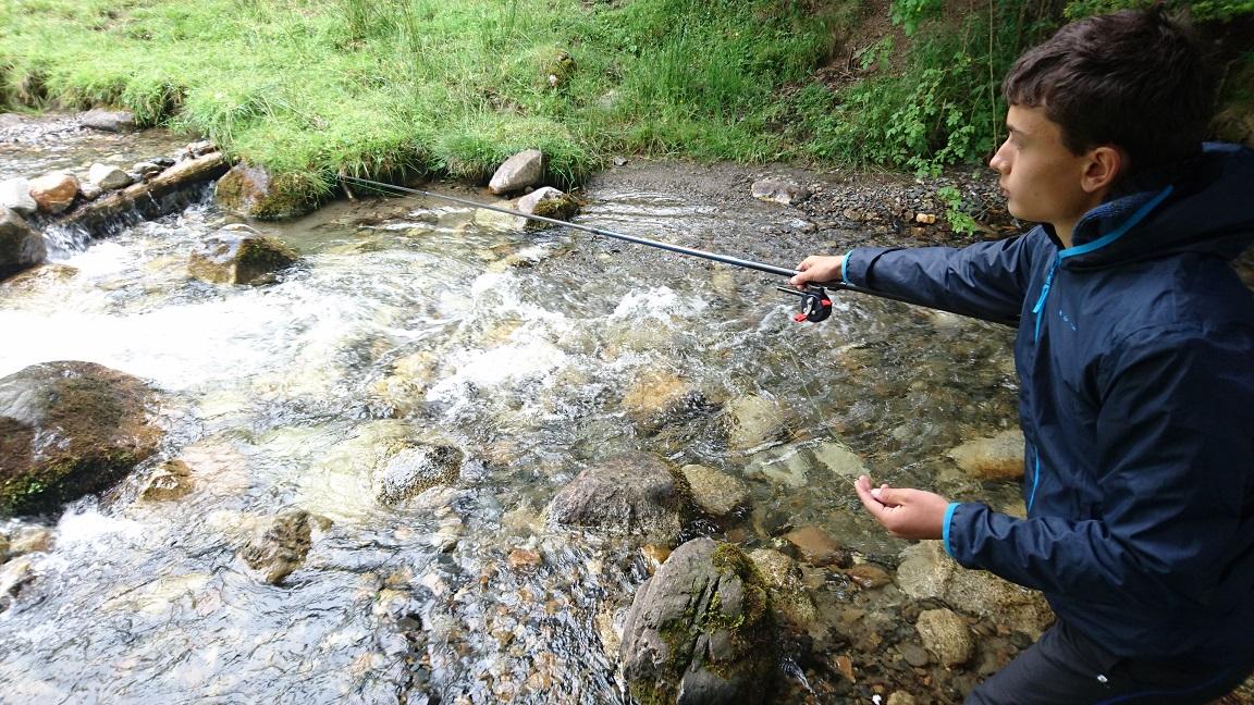 Toc en ruisseau