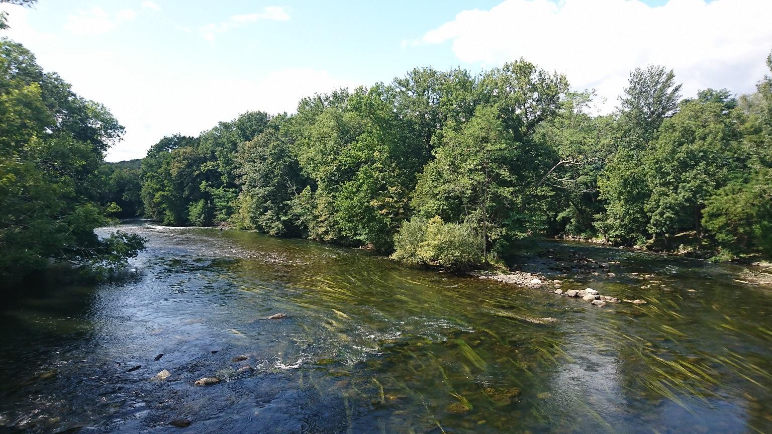 Confirmation en petite ou grande rivière