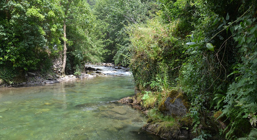 Rivière magnifique de l'Ariège