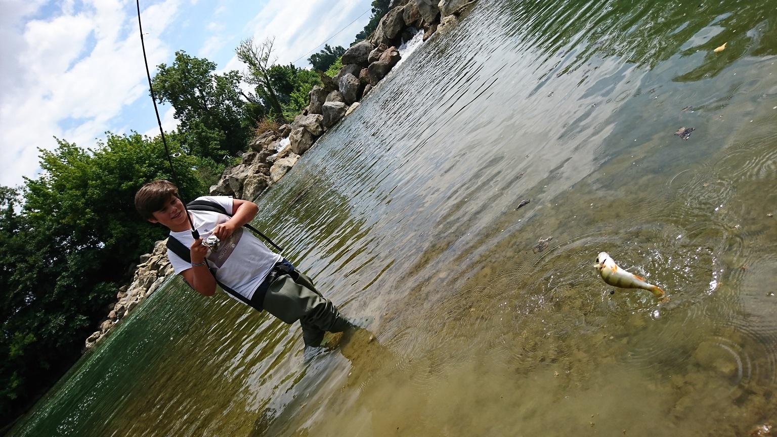 Perche en rivière