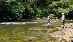 Perfectionnement Mouche au Fouet en grande rivière