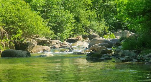 Ruisseau de montagne perdu