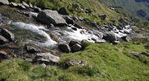 Ruisseau des Pyrénées